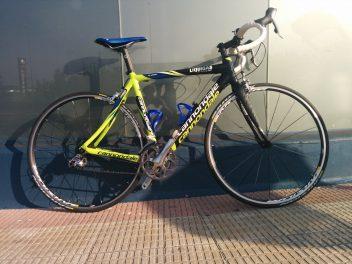 Cannondale Synapse talla 54 800 Euros